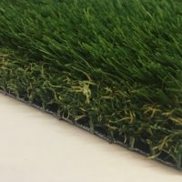 HT Inspire artificial grass