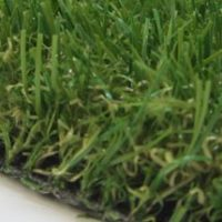 HT Oasis Plus artificial grass